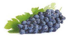 blyuda-iz-vinograda