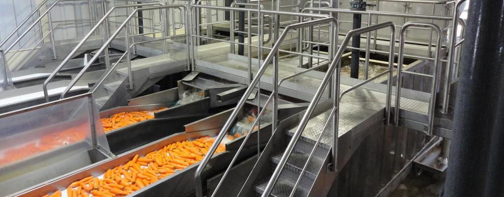 post-harvest-equipment-carrot-lines